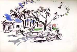 Motorbike diaries, under the magnolia tree